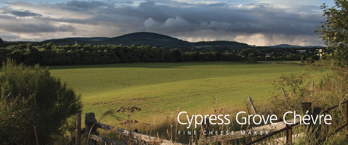 cypress grove bcfood ERP case study