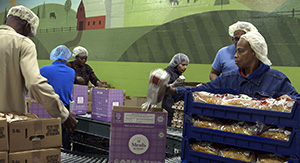 GA Foods bcFood ERP case study Assembly line